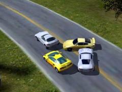 Race Cars: The Extreme Rally 1.0 Screenshot