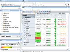 RadarCube ASP.NET for MSAS 3.21.0 Screenshot