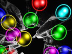 Rainbow bubbles free lwp 5.2 Screenshot