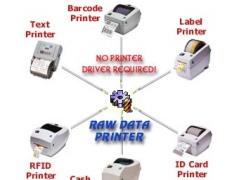 Raw Data Printer Component 2.0 Screenshot
