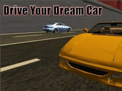 Real City Car Driver 3D Sim 1.2 Screenshot