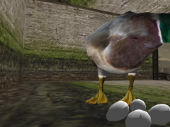 Real Duck Simulator 1.5 Screenshot