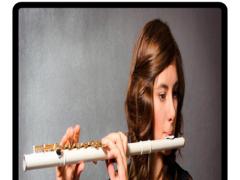Real Flute Ringtones 1.0 Screenshot