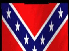 rebel flag live wallpaper 1.1 Screenshot