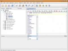 REM - A NetBeans Module for ZK 5.0.5C Screenshot