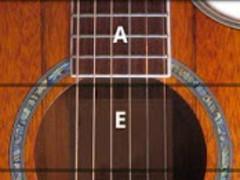 RockOut Acoustic Pro Guitar 1.3.1 Screenshot
