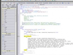 Roden Web Editor 4 Screenshot