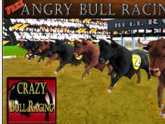 Rodeo Bull Racing Champions 1.0 Screenshot