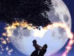 Romantic Loves Live Wallpaper 1.7 Screenshot