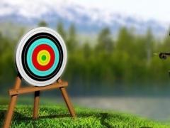 Royal Archery Crossbow Master 1.2 Screenshot
