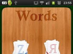 Russian Words Test Pro 1.0 Screenshot