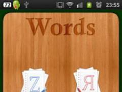 Russian Words Test 1.0 Screenshot