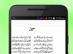 Saif ul Malook 1.0 Screenshot