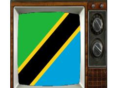 Satellite Tanzania Info TV 1.0 Screenshot
