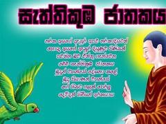 Sattikumba Jathakaya for TAB 1 Screenshot