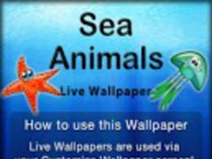 Sea Animals Live Wallpaper 2.1 Screenshot