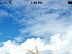 Seashells Live Wallpaper 1.0 Screenshot