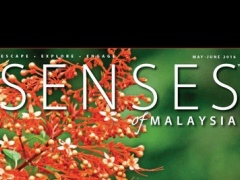 Senses of Malaysia 6.0 Screenshot
