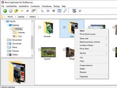 ShellBrowser Delphi Components 10.4.1 Screenshot