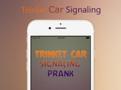 Signaling Car Key - Trinket Car Simulator Free 1.0 Screenshot