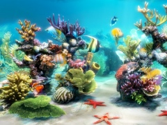 Sim Aquarium FREE! 3.7.55 Screenshot