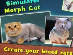 Simulator Morph Cat 1.0 Screenshot