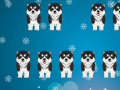 Singing Husky Puppy Piano 1.0 Screenshot