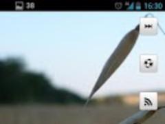 Skull Dock uccw skin 1.0 Screenshot