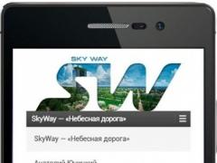 SkyWay Partner 0.1 Screenshot
