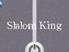 Slalom King 1.0 Screenshot