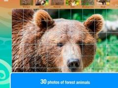 Smart Cubes: Forest 1.4 Screenshot