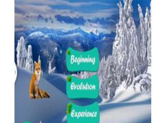 Snow Fox 1.0 Screenshot