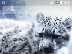 Snow Leopard Xperien Theme 1.0.2 Screenshot