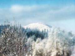 Snowland Screensaver 1.0 Screenshot