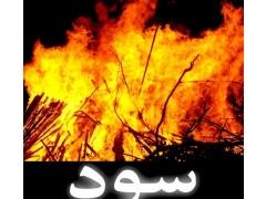 Sood - Tanzeem e Islami 1.2 Screenshot