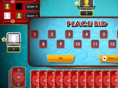 Spades Pro 1.0 Screenshot