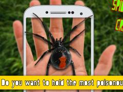 Spider On Hand: Crazy Joke 1.0 Screenshot