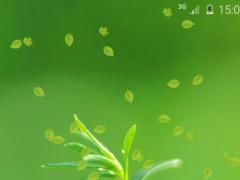 Spring Green Live Wallpaper 1.1 Screenshot