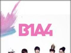 [SSKIN] B1A4_live 2.32 Screenshot