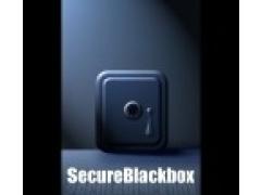 SSLBlackbox VCL 10.0 Screenshot