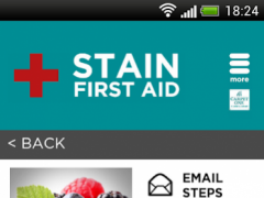Stain First Aid for Carpet 3.2 Screenshot