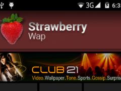 Strawberry Wap 1.1 Screenshot