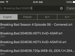 Subtle Subtitles 1.5 Screenshot