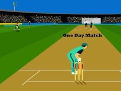 Super Over Cricket 1.0 Screenshot