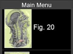 Surgical Anatomy Mobile 2.0 Screenshot