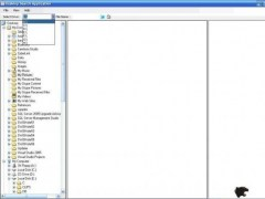 Swatian Tigers Desktop Search 1.0 Screenshot