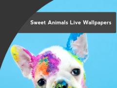 Sweet Animals Live Wallpapers 1.3 Screenshot