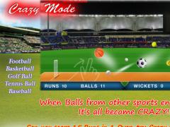T20 Blast Cricket Flick 2016 1.07 Screenshot