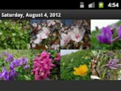 Tadano Photo Editor 1.1.3 Screenshot