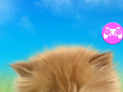 Talking baby cat.  Screenshot
